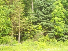 Real Estate -   120 SMITH ROAD, Oxford Station, Ontario -