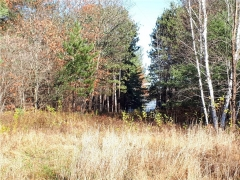 Real Estate -   Part 1 ROUND LAKE ROAD, Round Lake, Ontario -