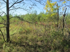 Real Estate -   1590 COUNTY ROAD 20 ROAD, Oxford Station, Ontario -
