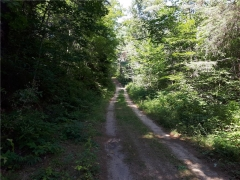 Real Estate -   00 MASK ROAD, Killaloe, Ontario -